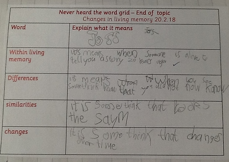 KS1 NHTWG History Hot